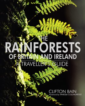 The Rainforests of Britain and Ireland by Clifton Bain